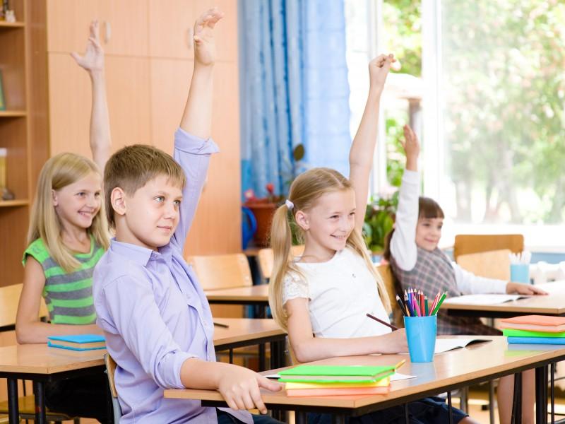 Birch Grove Primary School Kindergarten Info Meeting ...