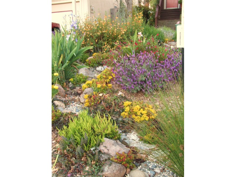 Green Home and Garden Classes Watsonville CA Patch