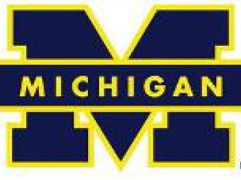 university of michigan essay 2013 These university of michigan - ann arbor college application essays were written by students accepted at university of michigan - ann arbor.