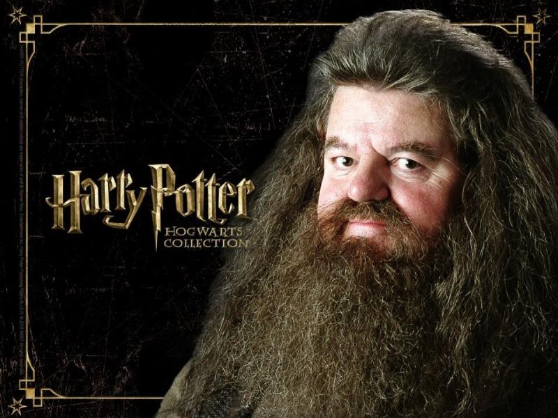 Harry Potter S Hagrid Hospitalized In Orlando Brandon