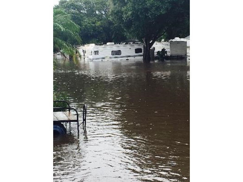 40 Palm Harbor Residents Evacuated Palm Harbor Fl Patch