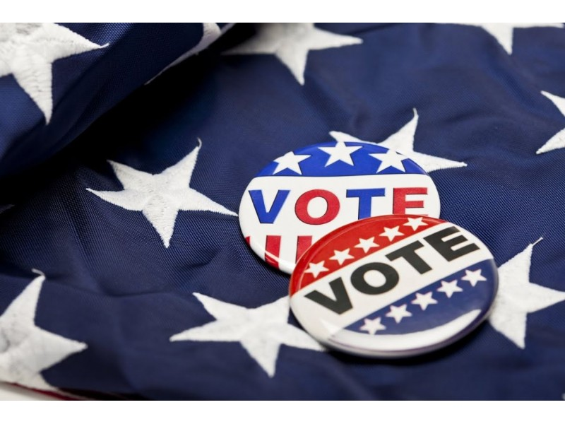 The Download's 2016 IL primary election guide