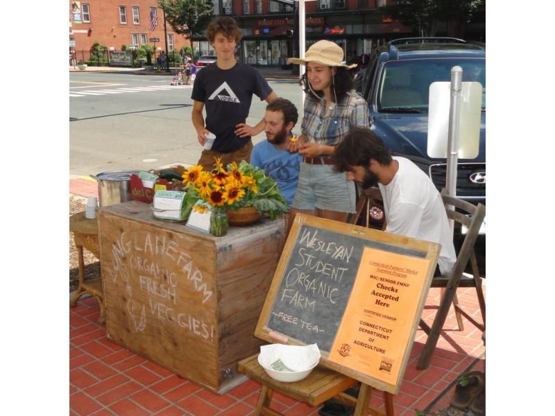 Long Lane Organic Farm - Farm in Middletown