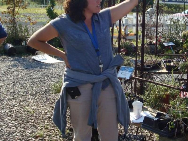 If lisa miccolis has her way ash s flower farm will bloom again