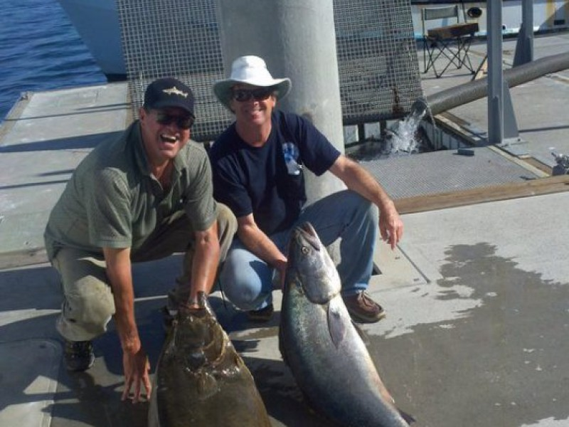 Surf fishing improves as temps rise redondo beach ca patch for Best fishing in california