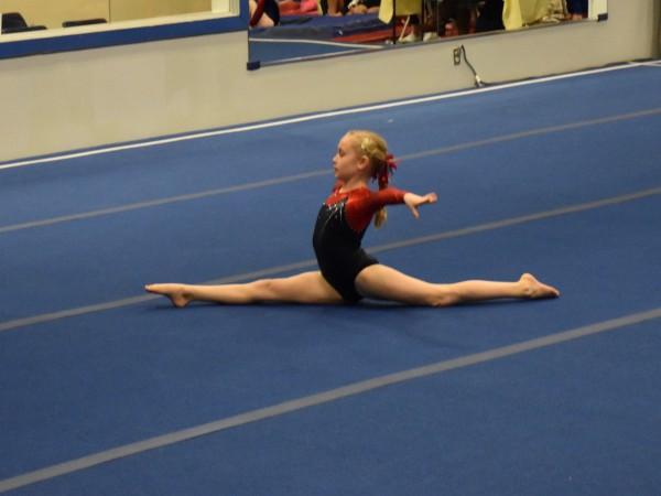 level 6 gymnastics state meet ct singles