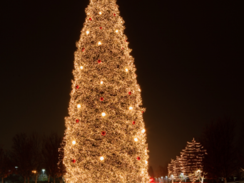 bishop ranch tree lighting ceremony offers free activities for