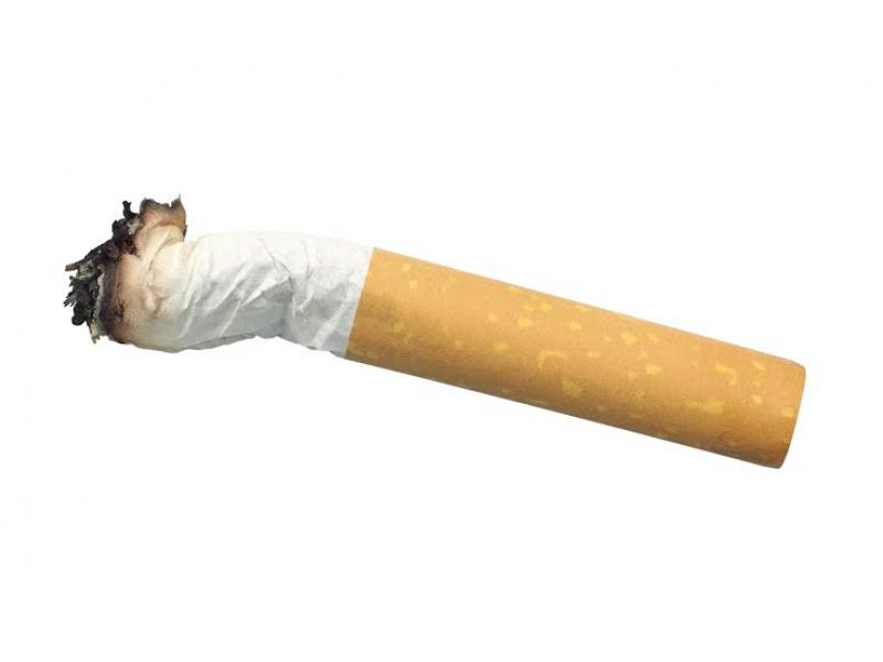 Cigarrette Butt 13