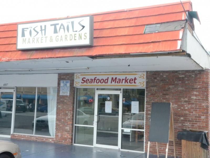 South tampa fish market beats supermarket freshness for Fish market tampa