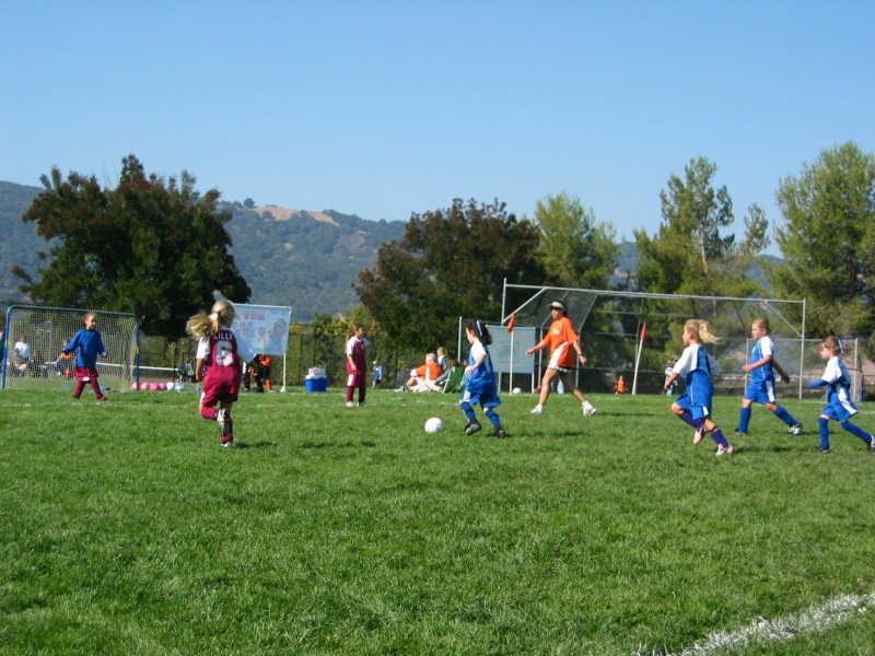 Soccer Mom Leaves the Game - Pleasanton, CA Patch