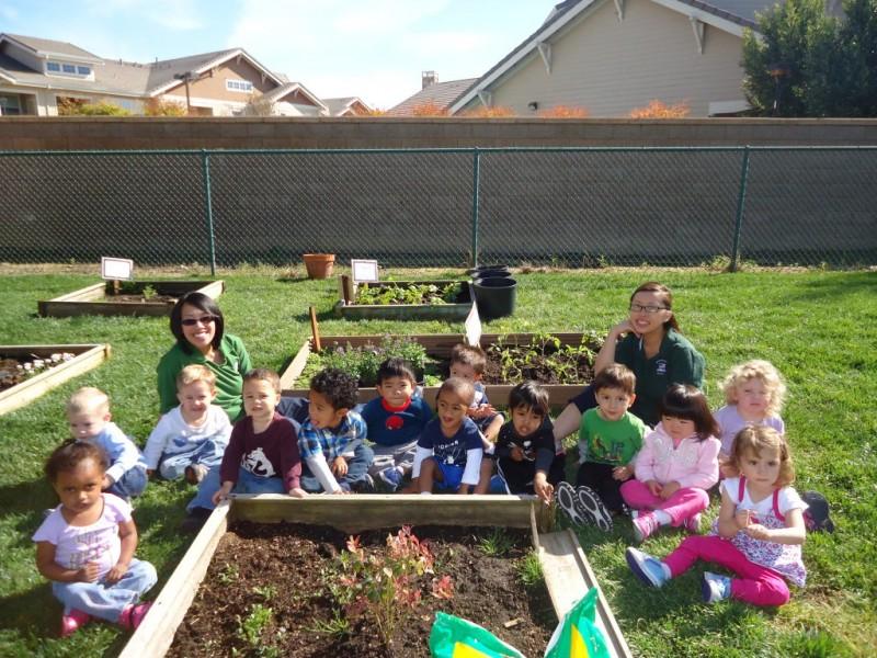 elk grove preschool preschoolers at merryhill school in elk grove celebrate 316