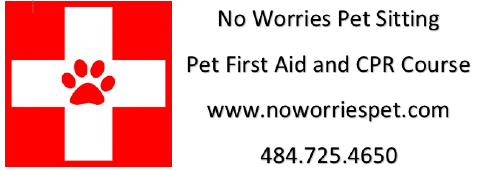 aid cpr pet certification patch course nazareth worries hosted pa