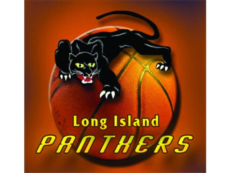 Panthers Basketball Logo Panther Summer Basketball