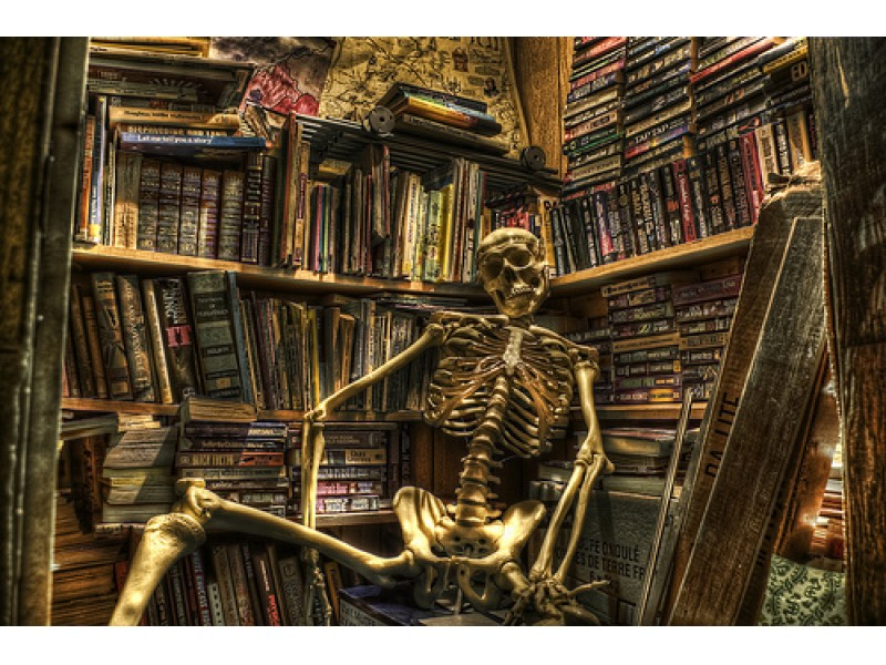 Image result for Haunted Library image