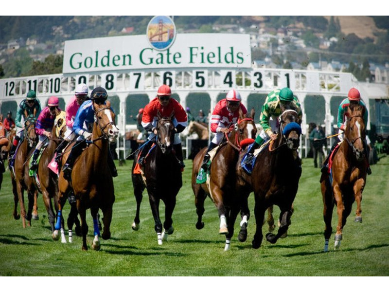 popular jockey seriously injured during race sunday at golden gate fields albany ca patch