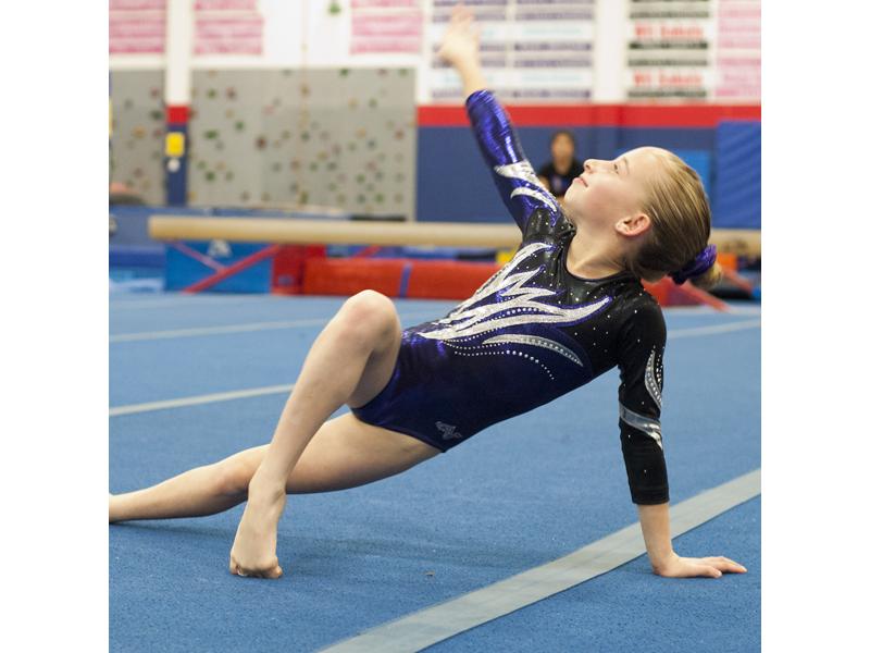 michigan level 4 gymnastics state meet results