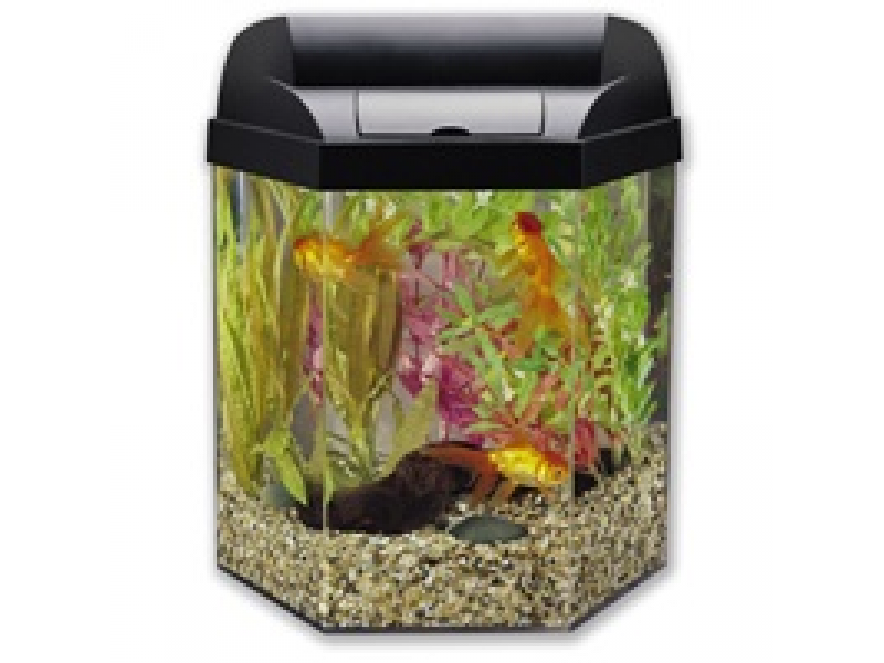 10 gallon bowed fish tank 5 gallon hexagon tank orland