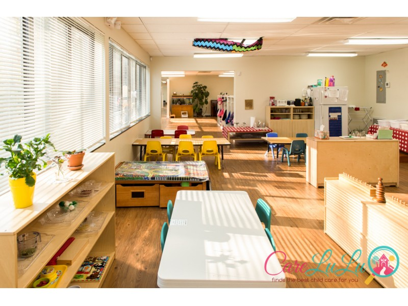How to Start a Montessori School