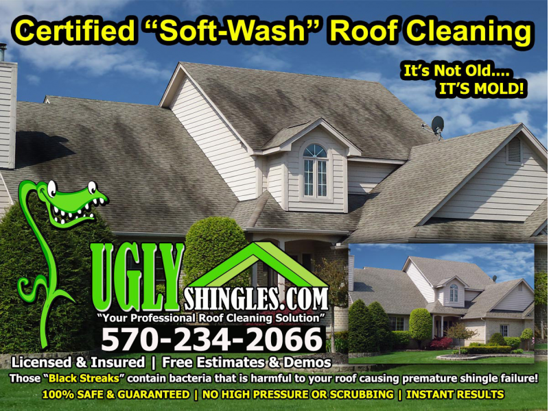 Certified Soft Wash Roof Cleaning Patch