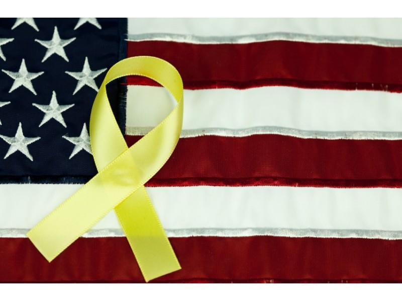 Veterans Day Ceremony Set For Wednesday