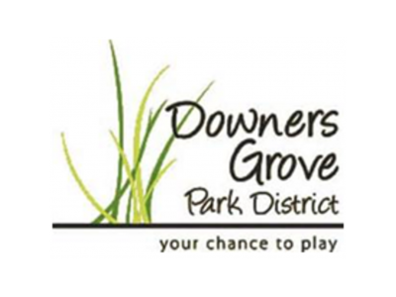 """downers grove sex chat Police are investigating a teacher at downers grove north high school, after a 1999 graduate accused the teacher of sexually harassing her  """"he used to go into online chat rooms with me and ."""