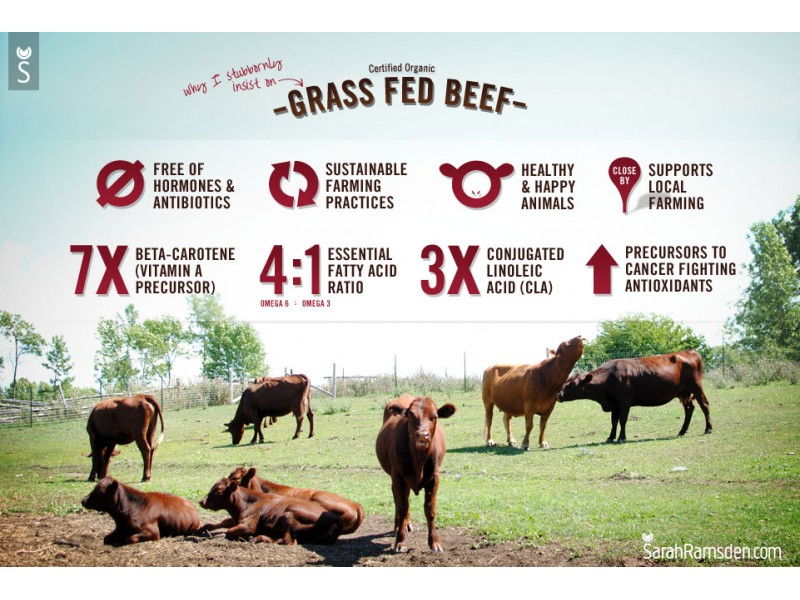 The Differences Between Grass-Fed Beef & Grain-Fed Beef Saddle Brook