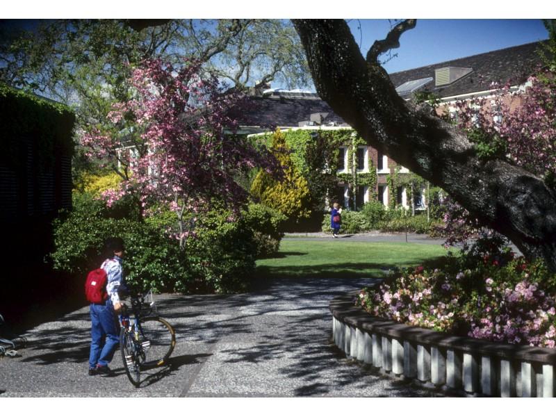 personal essay santa monica college
