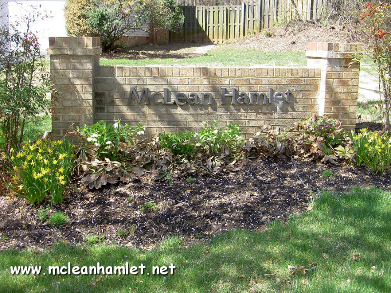 Homes For Sale Mclean Hamlet Va