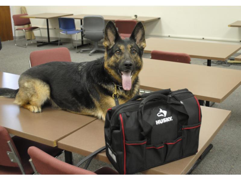 Avid dog lovers donate lifesaving kits to dupage sheriff39s for Avid dog