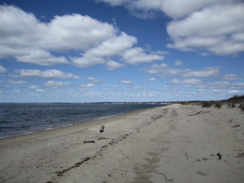 Sherwood Island Beach Parking