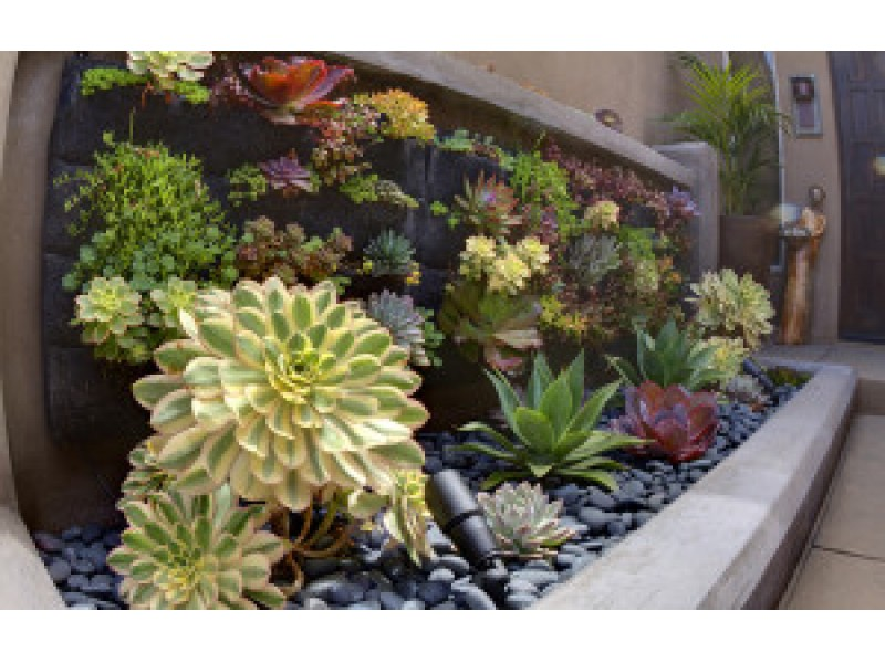 Drought Resistant Landscape Design To Mimic Your Indoor