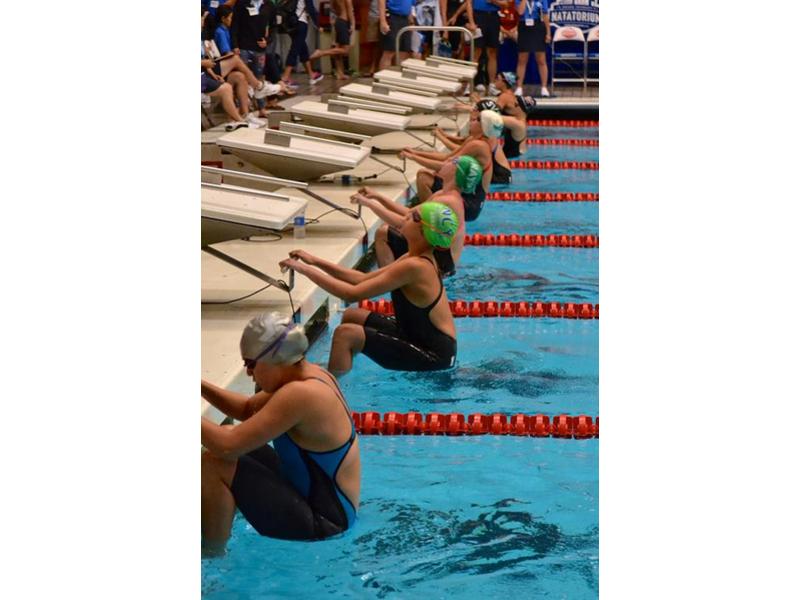 wilton ymca swim meet