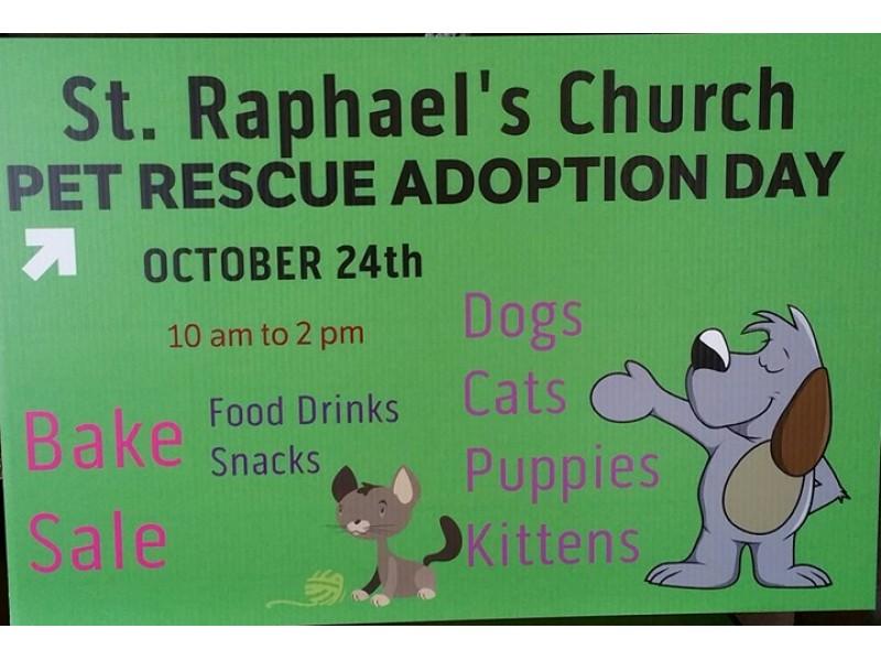 Dog Adoption Belmar New Jersey