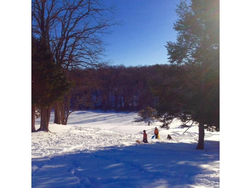 Island Park Ny Snow Report
