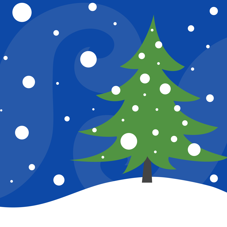 Ridgewood Seeks Holiday Tree Donation | Ridgewood-Glen Rock, NJ Patch