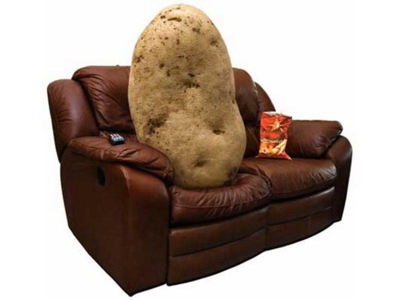 Couch Potato Furniture Company Essay Sample