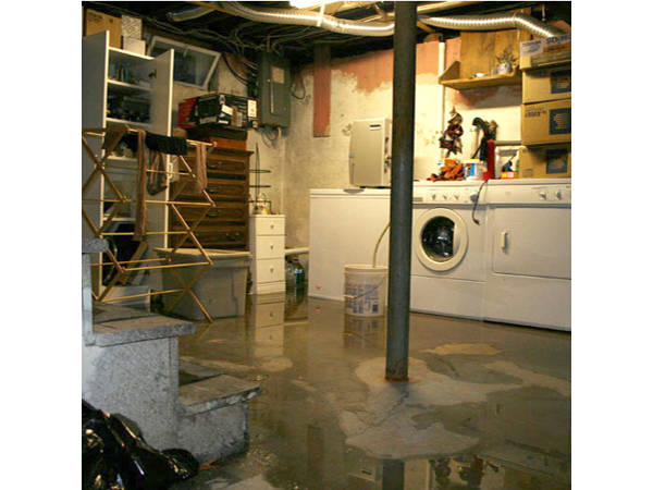 my basement flooded will my insurance company cover it do i need a