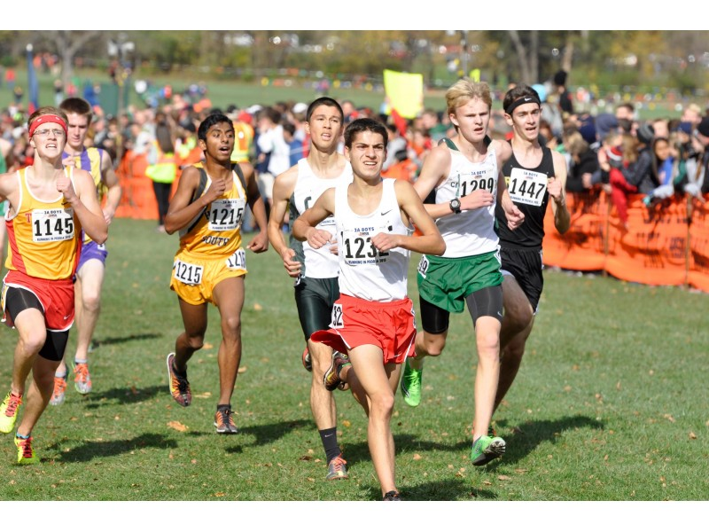 cross country state meet 2015 illinois form