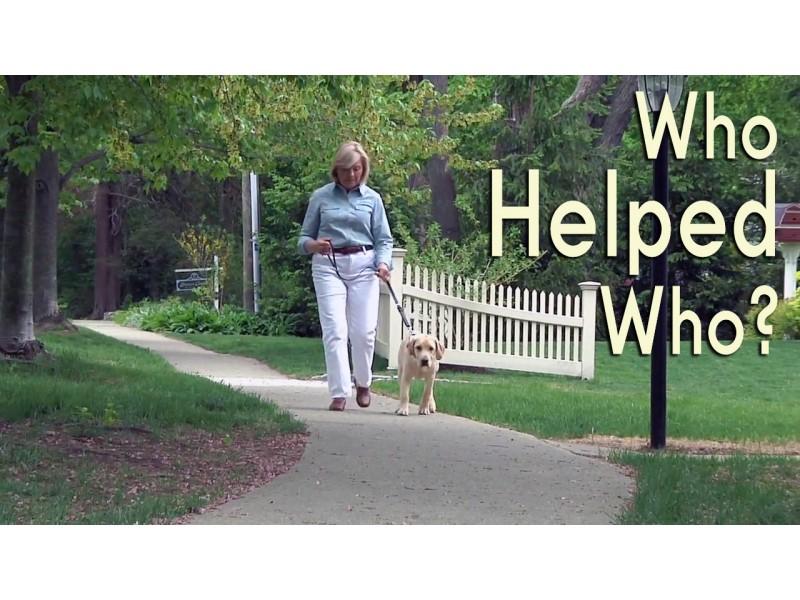 Ridgefield Widow Find Purpose In Raising Guide Dogs