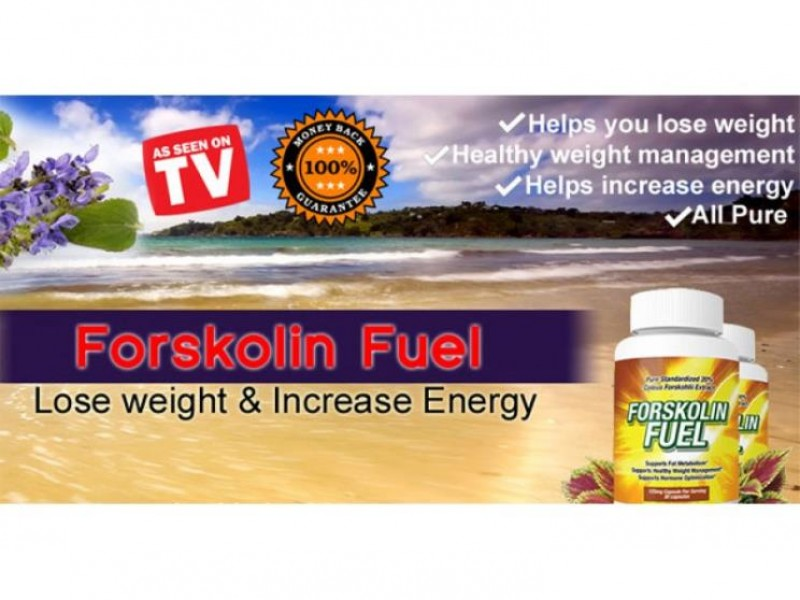 Pure Forskolin Extract Fuel Arrives - Dr Oz Pure Extract has Great