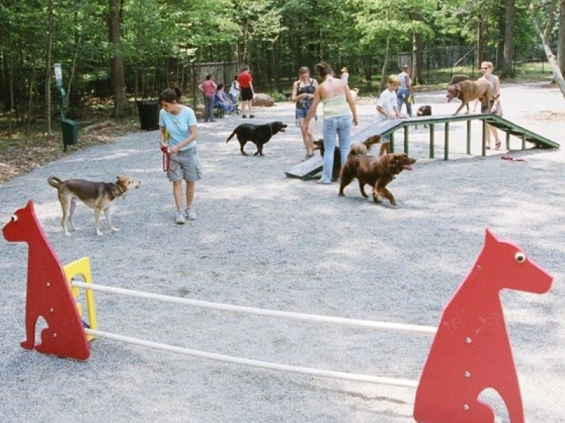 Off-Leash Dog Attacks Montclair Man In South Mountain Reservation: Police