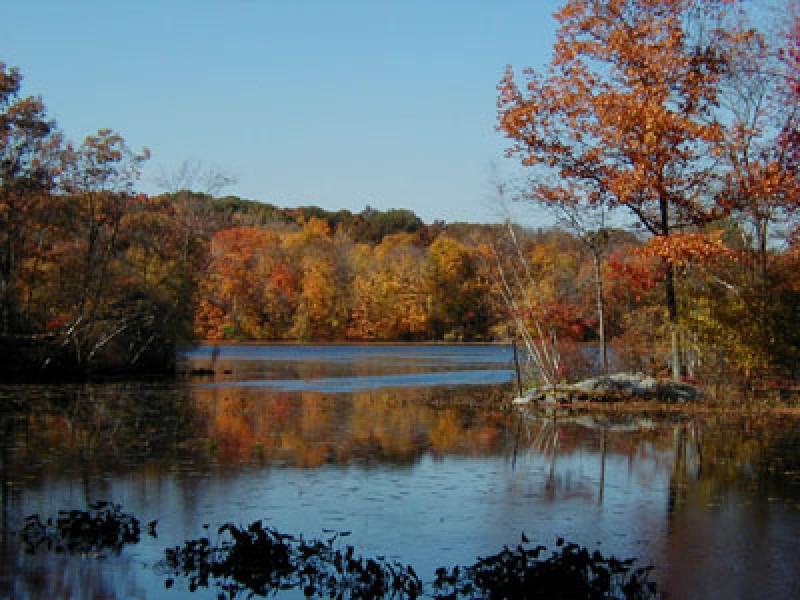Birding Teatown Lakes