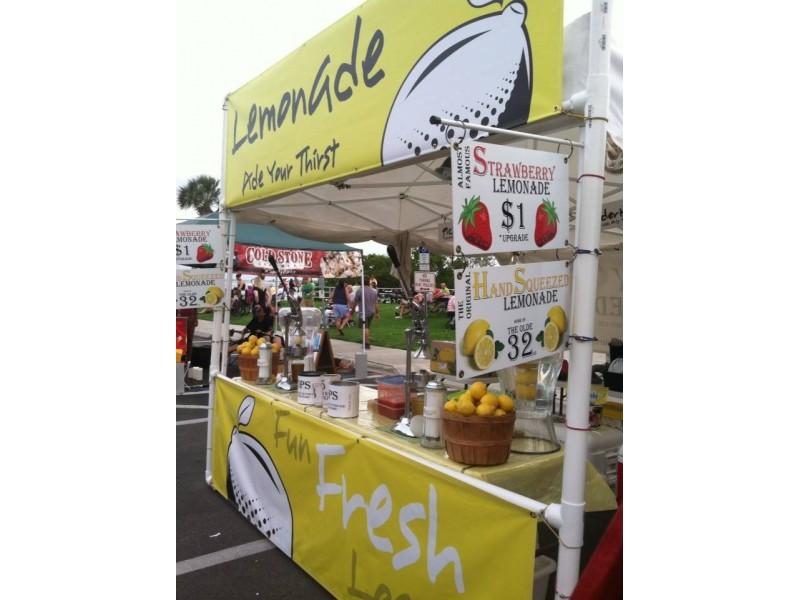 Increase Profit Margins Using This Lemonade Stand Business Plan