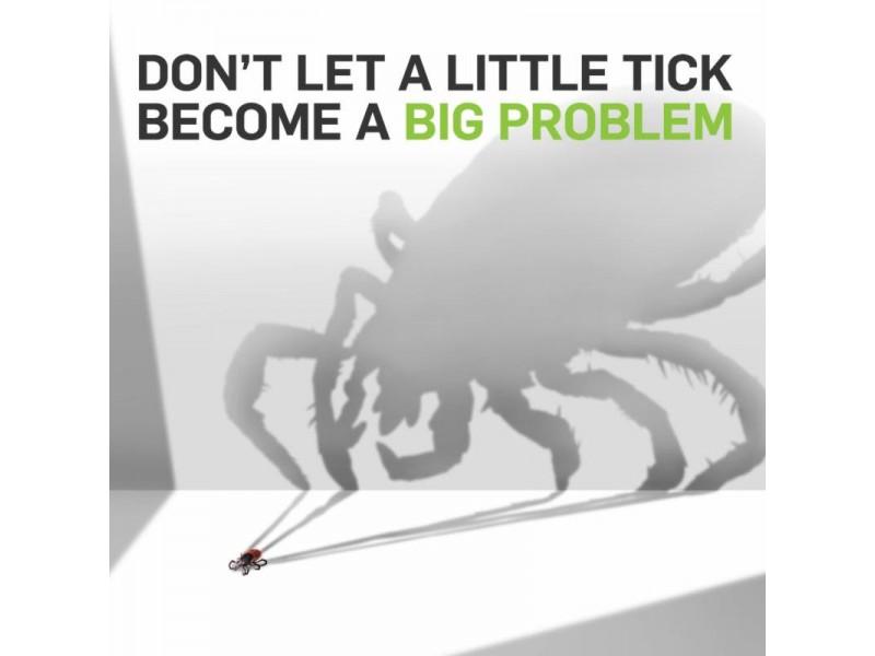 Ridgefield Library Announces Lyme Disease Seminar - Ridgefield, CT Patch