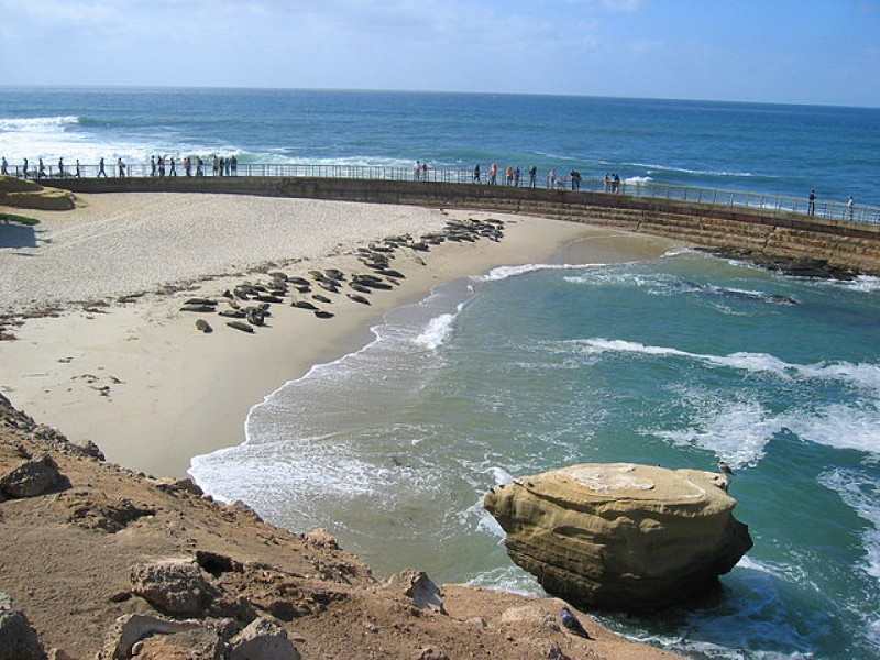 City May Appeal La Jolla Children 39 S Pool Ruling La Jolla CA Patch