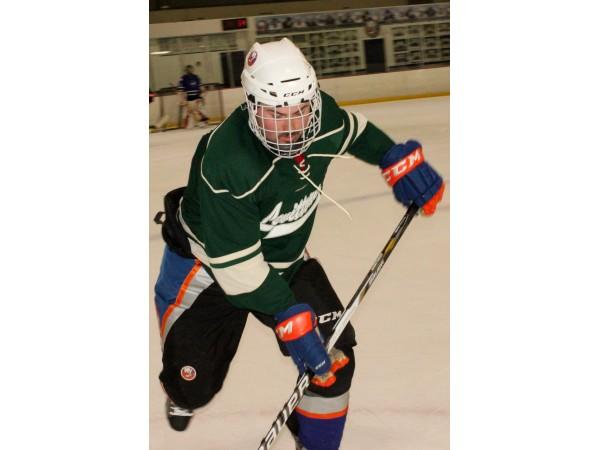 Adult Ice Hockey League 48