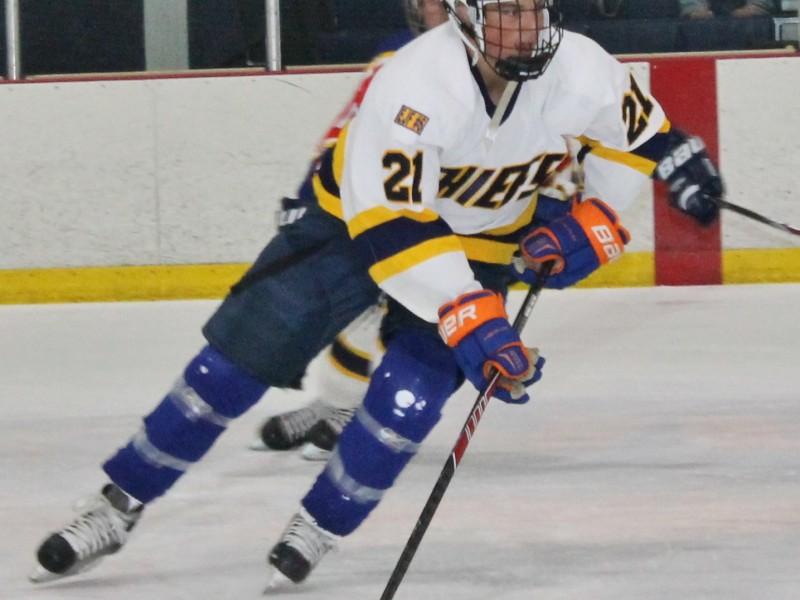 Adult Hockey Leagues 22