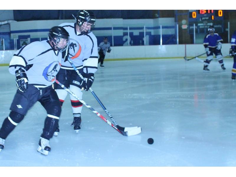Adult Ice Hockey League 38