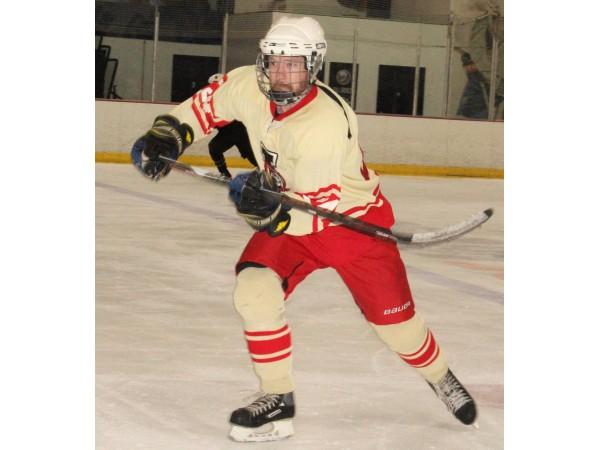 Adult Hockey Leagues 111