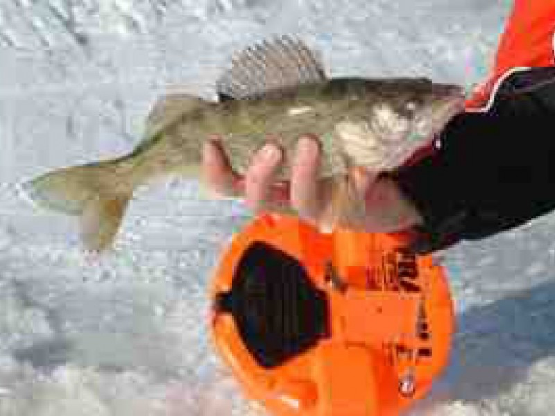 Ice fishing four tip up line questions answered muskego for Tip up fishing